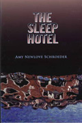 The Sleep Hotel